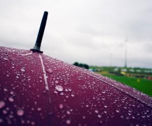 rain, umbrella, and storm image