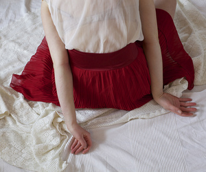 red, vintage, and skirt image