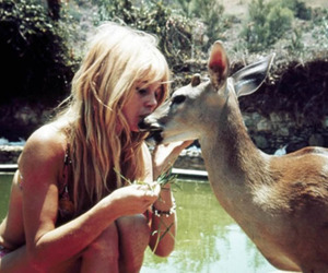 nature, deer, and blonde image