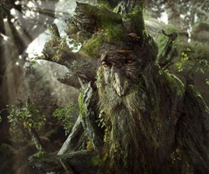 lord of the rings, tree, and ent image