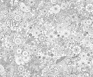 background, flowers, and gray image
