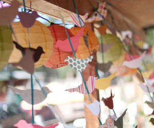 birds, colorful, and Paper image