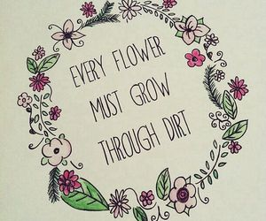 flower, poem, and quote image