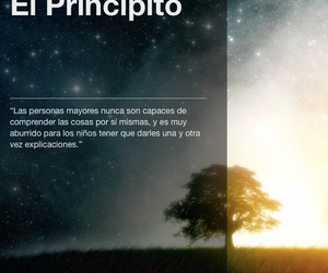 book, cuento, and frases image