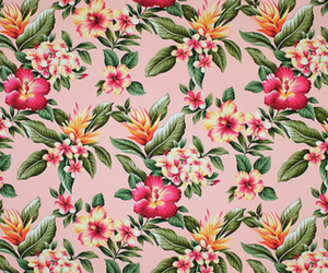 flowers, tropical, and vintage image