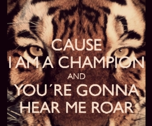 ever, roar, and katy image