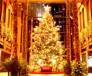 christmas, december, and lights image