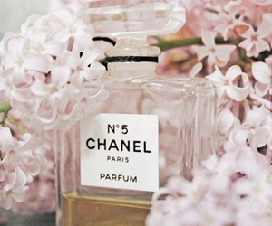 fashion, parfum, and pink image