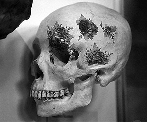 skull, black and white, and flowers image