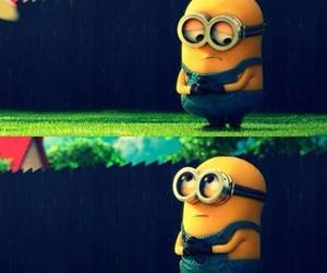 minions, sweet, and coccole image