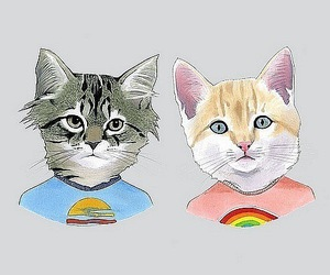 art, cats, and illustration image