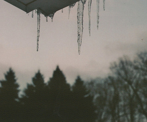 ice, indie, and nature image