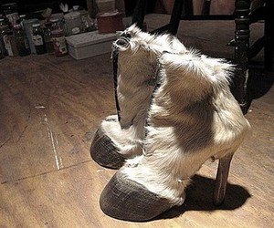 fashion, hooves, and shoes image