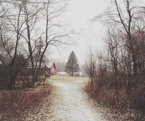 winter, photography, and landscape image
