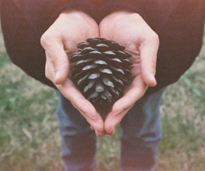 heart, nature, and vintage image