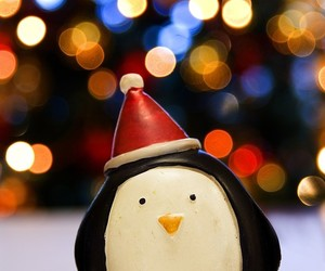 christmas, penguin, and light image