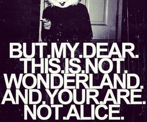 wonderland, alice, and bunny image