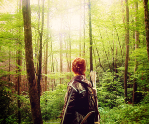 the hunger games, mockingjay, and district 12 image