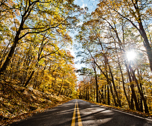 colors, drive, and fall image
