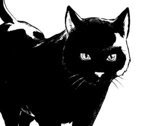 cat, manga, and black cat image
