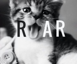 blank and white, roar, and cutu image