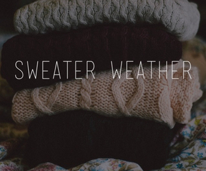 cold, sweaters, and quotes image