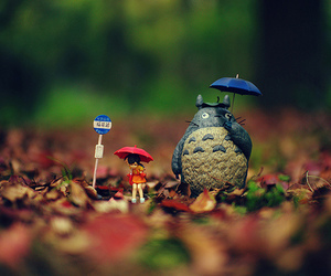 totoro, anime, and photography image