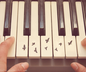 piano, bird, and music image
