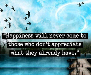 happiness, quote, and appreciate image