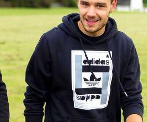 Hot, liam payne, and niall horan image