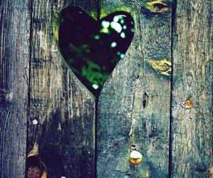 heart, love, and nature image