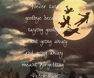 peter pan, goodbye, and disney image
