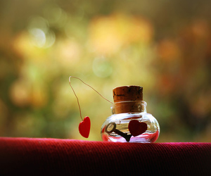 bottle, love, and heart image