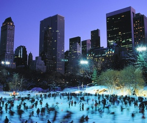 blue, city, and ice image