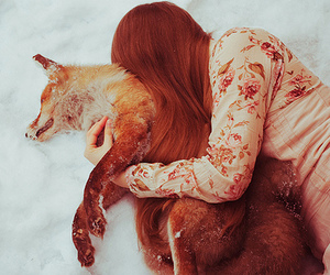 fox, girl, and snow image