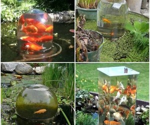 crafts, do it yourself, and fish image