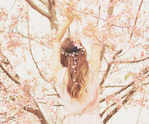 cherry blossom, snow, and sweet image