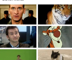 cat, david tennant, and doctor who image