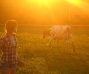 country, girl, and cow image