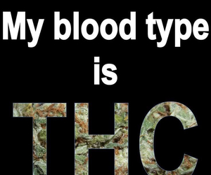 weed, thc, and blood image