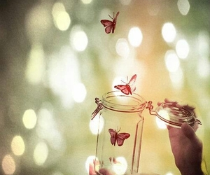 butterfly, freedom, and light image