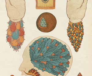 anatomy, illustration, and bombay bicycle club image