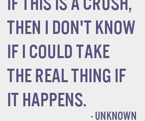quote, crush, and love image