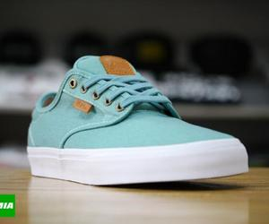 teal, vans, and off the wall image