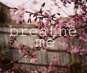 flowers, text, and breathe me image