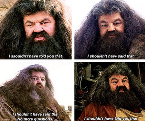 harry potter, hagrid, and philosopher's stone image