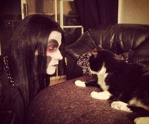 cat, metal, and wednesday 13 image