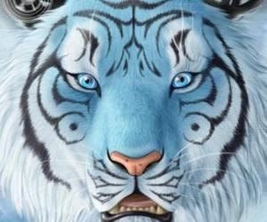 blue and tiger image