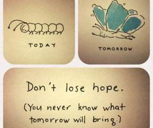 butterfly, hope, and today image