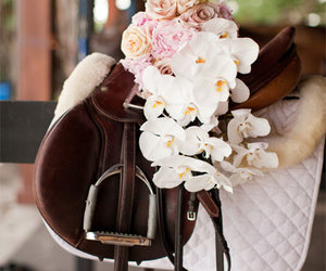 equestrian and flowers image